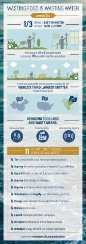 Wasting Food is Wasting Water Infographic